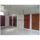 Modèle en verre en bois intérieur de porte de salle de bains de forces de défense principale de PVC