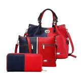 Busta calda della borsa di vendita con le borse delle signore del raccoglitore