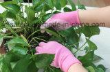 Le gant en nylon coloré de travail avec l'unité centrale a enduit (PN8004)