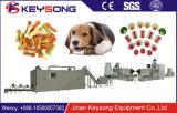 Após o alimento de cão animal disponível do serviço de vendas o animal de estimação mastiga a máquina