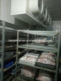 Abkühlung-einfrierender Raum/Kaltlagerungs-Kühlraum-Gerät