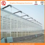 Groenten / Garden / Flowers / Farm Multi Span PC Sheet Greenhouse
