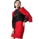 Костюм дела женщин официально износа офиса повелительниц верхнего качества