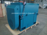Serie de Ykk, motor asíncrono trifásico de alto voltaje de enfriamiento aire-aire Ykk4501-2-355kw