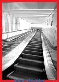 Guter Preis-Passagier-Rolltreppe-Preis
