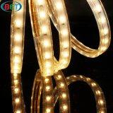 SMD5630 High Voltage Flex LED Strip Light Lumière extérieure 50 mètres 220V
