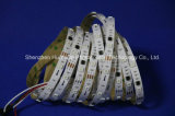 Striscia del chip 30LEDs 9W DC12V LED di colore completo SMD5050 di RGB IP20