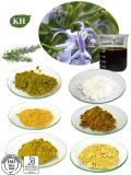Poudre d'extrait de Rosemary, extrait de lame de Rosemay, acide de Carnosic, acide de Rosmerinic, acide d'Ursolic