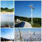 Turbine-Generator des Cer-anerkannter Wind-300W für Überwachung
