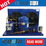 Icestaのフリーザーの商業食糧冷凍の圧縮機のフリーズの凝縮の単位