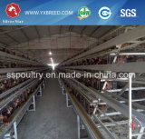 Las aves de corral chinas de las gradas de la maquinaria de granja de los abastecedores 4 acodan la jaula