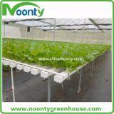 농업 농장 플레스틱 필름 온실을%s Nft 수경법 시스템