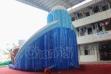 耐久の高品質の販売のための膨脹可能な二重スライド水スライド