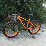 脂肪質のタイヤ(RSEB-508)が付いている高品質の電気自転車