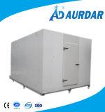 Vente de congélateur de réfrigérateur de chambre froide de qualité avec le prix usine