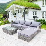 Мебель сада отдыха нового ротанга конструкции 2017 напольная