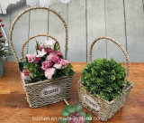 (BC-SF1010) respetuoso del medio ambiente natural hecho a mano de paja cesta de la flor