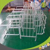 Caixas duráveis da gestação do porco da alta qualidade/agente individual da necessidade das tendas