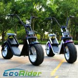 Ecorider Big Power Scooter électrique à deux roues Citycoco Electric Motorcycle