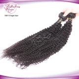 Unverarbeitete Menschenhaar-Extensions-verworrenes lockiges Großhandelsjungfrau-Peruaner-Haar