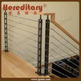 Balustres décoratifs d'acier inoxydable pour la pêche à la traîne d'escalier (SJ-H1431)