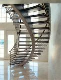 Escada de vidro da espinha dorsal / Escadaria curvada da espinha média / escada helicoidal