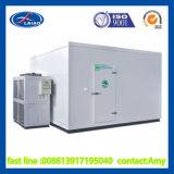 中国の低温貯蔵の冷蔵室のスリラーの製造者/製造業者