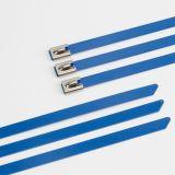 Le PVC a enduit des serres-câble de 316/304/201 acier inoxydable