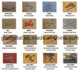 Q235, Q195 Gemeenschappelijke Losse Spijkers, B.V., HDG, de Spijkers van het Roestvrij staal