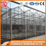 Serre chaude en aluminium commerciale de feuille de polycarbonate de profil de bâti en acier pour la fleur