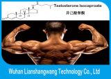 La ISO CAS 15262-86-9 de la testosterona Isocaproate/de la prueba para el músculo magro realza