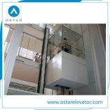群制御の観光ガラスが付いているパノラマ式のエレベーターの観察の上昇