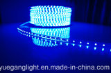 SMD 3528 지구 60 Light/M 낮은 전압 장식적인 가벼운 크리스마스 램프