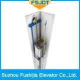 Elevador panorámico con el vidrio perfecto de la calidad que visita puntos de interés con la máquina Roomless