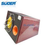 Аудиоий Subwoofer автомобиля цены по прейскуранту завода-изготовителя 12V Suoer автомобиль басовое Subwoofer 10 дюймов (YL-101)