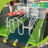 Het Werpen Glavanized van de Vloer van het Latje van het varken Plastic Hot-DIP Krat voor Zeug