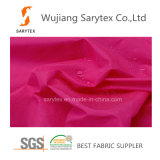 "Polyester C1161 100% 40/34 Brgtx40/34 Brgt 266X114 82gr/Sm 58 "" P/D+Cal+Wr C6"