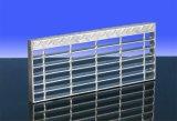 Проступи лестницы HDG с Perforated обнюхивать