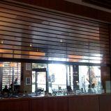Puerta comercial de la cortina suave del PVC de la seguridad transparente y de la persiana enrrollable de las parrillas de Windows (Hz-TD026)