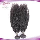 Extensão Curly Kinky do cabelo humano do cabelo natural do Virgin