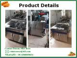 Acciaio inossidabile della strumentazione commerciale della cucina di alta qualità che si leva in piedi friggitrice elettrica