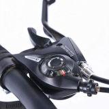 熱い販売の白いカーボンバイクパフォーマンスBMX (MTB-36)