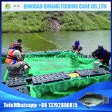 [تيلبيا] سمكة [فرم قويبمنت] في [أوغندا] فكتوريا بحيرة