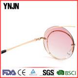 Da novidade feita sob encomenda nova do logotipo do projeto de Ynjn óculos de sol unisex engraçados