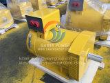 5kw St de Alternator van de Borstel met de Draden van het Koper van 100%