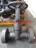 Válvula de puerta del sello de presión 2500lb del reborde 2 de Rtj ''