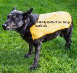 Camisola de segurança animal de estimação, feita de material 100% poliéster (DFD1008)