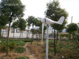 400W Licht und Convenience Wind Turbine