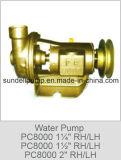 """(PC8000-1.25 """") aço inoxidável/bombas de água cruas marinhas de bronze do mar"""