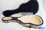 Покрасьте аргументы за гитары пены трудное классицистическое и акустическое Gfm-16